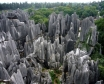 The Stone Forest of Madagascar